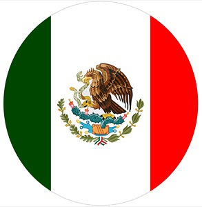 Mexican Flag LED Logo Door Projector Light