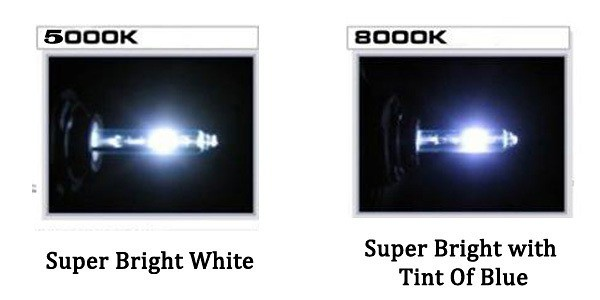 HID Xenon CanBus Color Lights