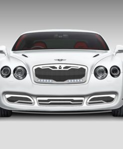 Macaro Lower bumper grille for 2004-2009 Bentley GT/GTC fits All models (Polished finish)